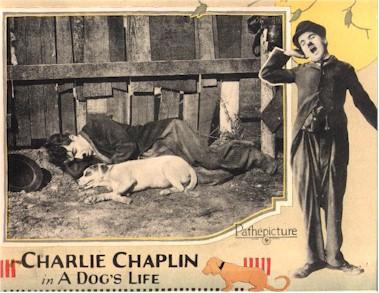Charlie Chaplin A Dog's Life (lobby card)
