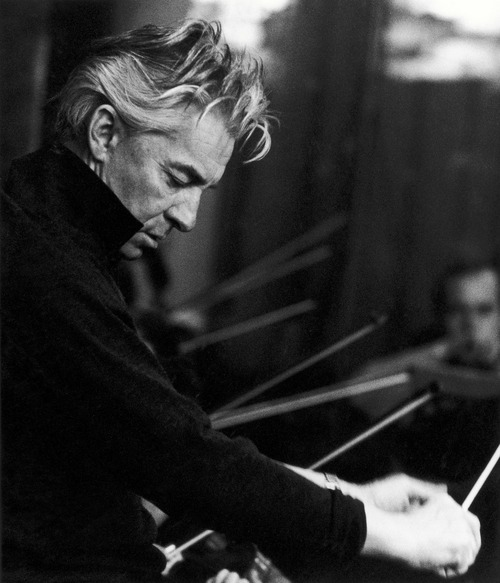 KARAJAN PERFECT HAIR
