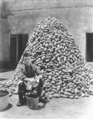 ALL NIGHT LONG (1924) HARRY LANGDON