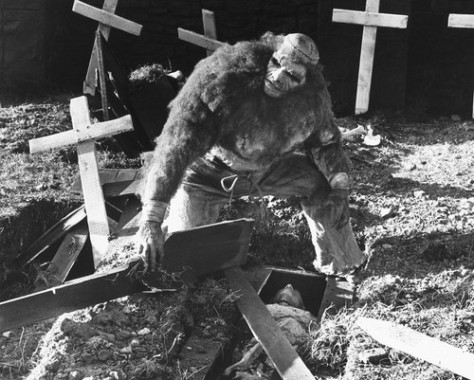 Frankenstein And The Monster From Hell  1973