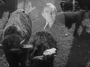 Glen or Glenda Bela Lugosi