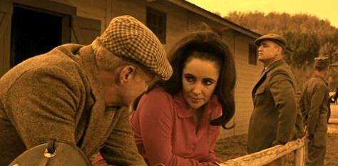 Reflections in a Golden Eye. Keith, Taylor, Brando