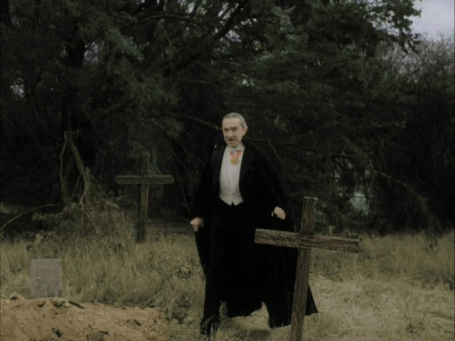 Plan 9 From Outer Space (colorized) Bela Lugosi