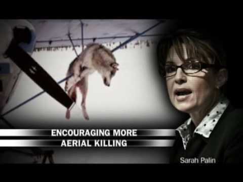 SARAH PALIN WOLF KILLING