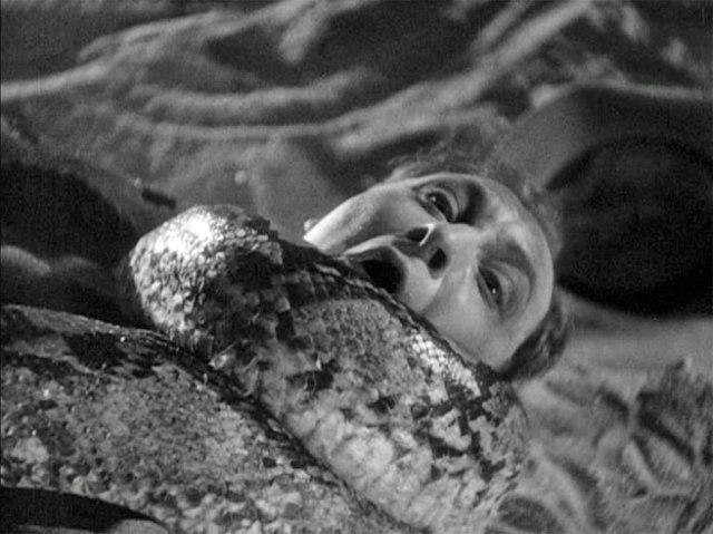 MURDERS IN THE ZOO (1933) screenshot