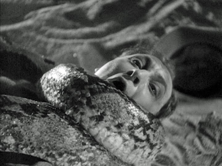 MURDERS IN THE ZOO (1933) screenshot