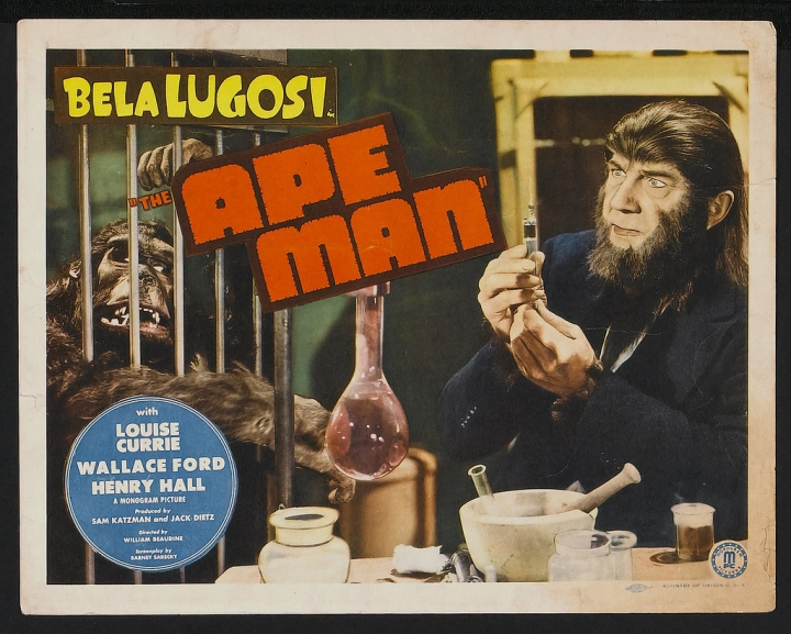 THE APE MAN (1943) lobby card. Bela Lugosi.