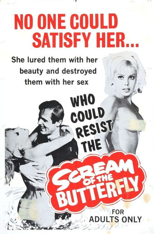 Scream of the Butterfly (1965) poster