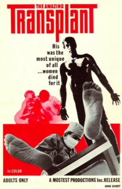THE AMAZING TRANSPLANT (1970 Doris Wishman) theatrical poster