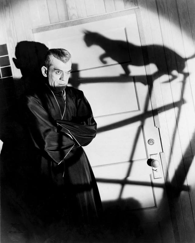 karloff black cat7