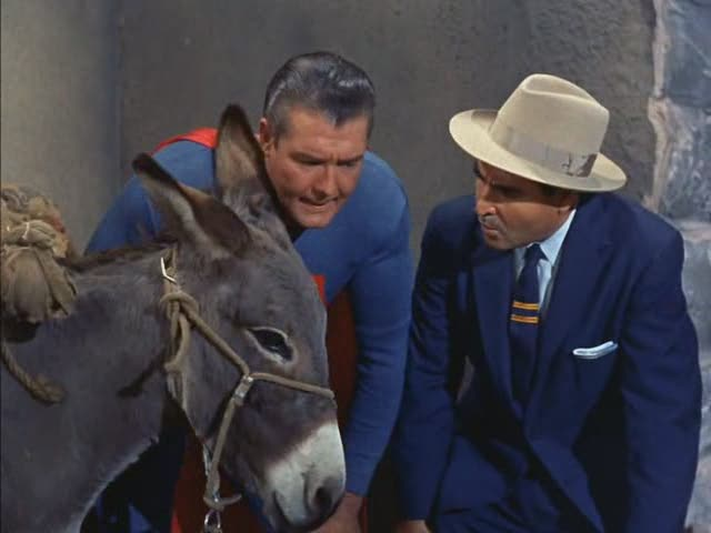 Adventures of Superman The Brainy Burro