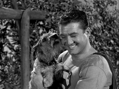 THE DOG WHO KNEW SUPERMAN